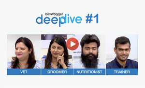 JollyWagger DeepDive #1 - With Pet Specialists in Gurgaon