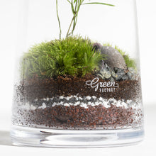 Load image into Gallery viewer, GREEN FACTORY | Forest Small Asparagus Terrarium - LONDØNWORKS