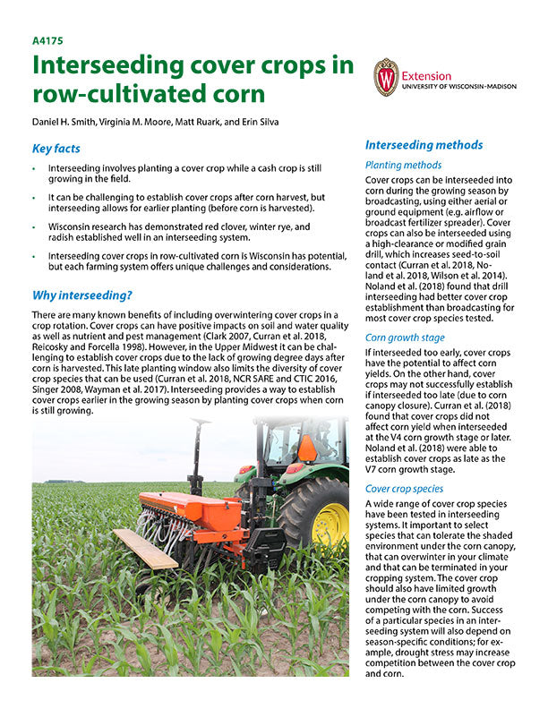 Interseeding Cover Crops in Row-cultivated Corn