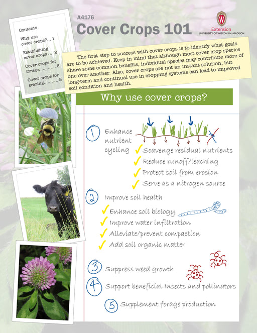 Cover Crops 101
