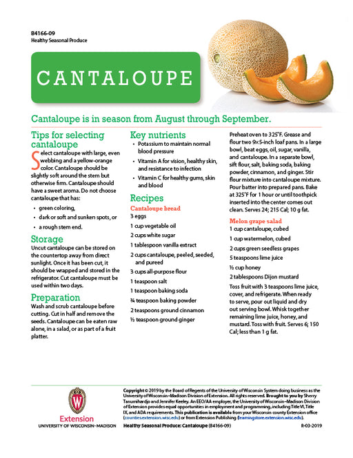 Healthy Seasonal Produce: Cantaloupe