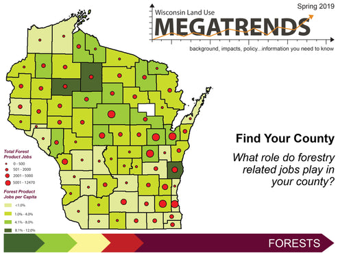 Wisconsin Land Use Megatrends: Forests