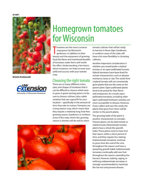 Homegrown Tomatoes for Wisconsin