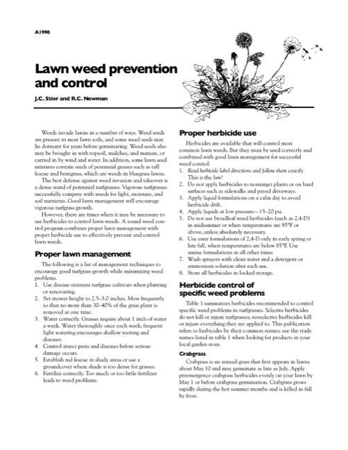 Lawn Weed Prevention and Control