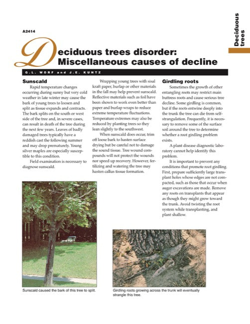 Deciduous Trees Disorder: Miscellaneous Causes of Decline
