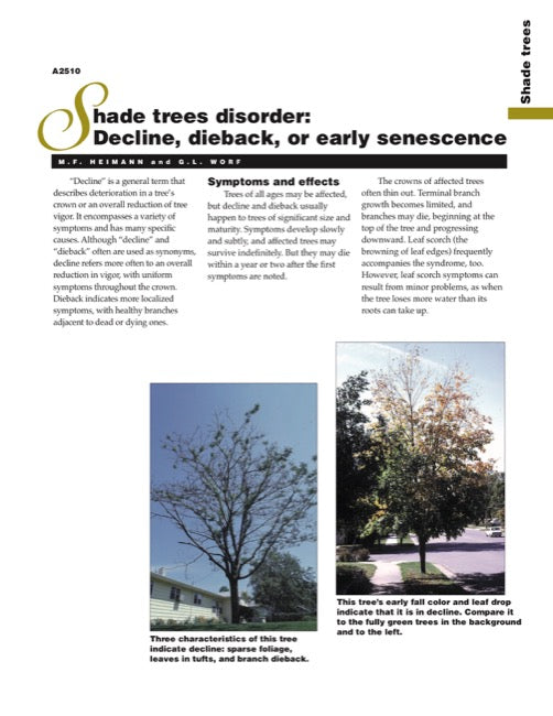 Shade Trees Disorder: Decline, Dieback, or Early Senescence