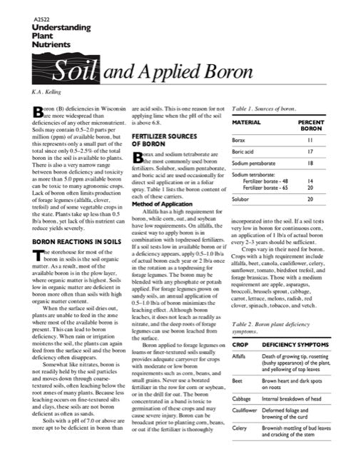 Understanding Plant Nutrients: Soil and Applied Boron