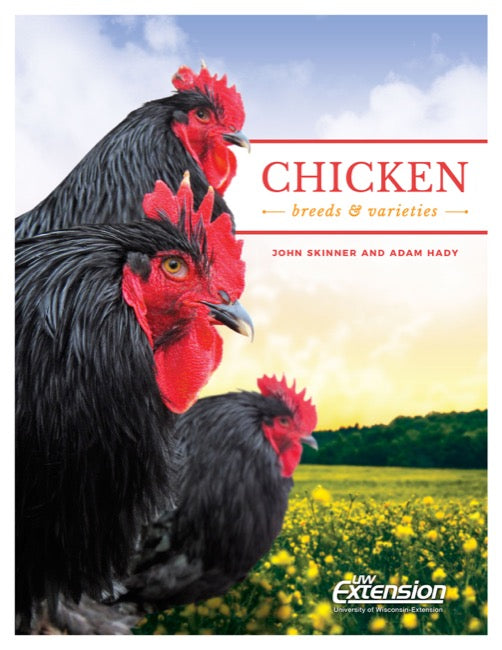 Chicken Breeds and Varieties