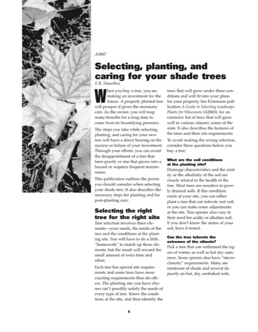 Selecting, Planting, and Caring for Your Shade Trees