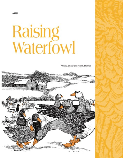 Raising Waterfowl