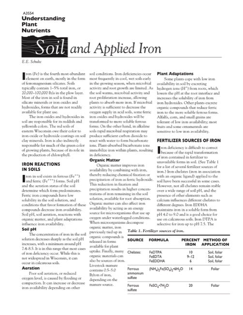 Understanding Plant Nutrients: Soil and Applied Iron