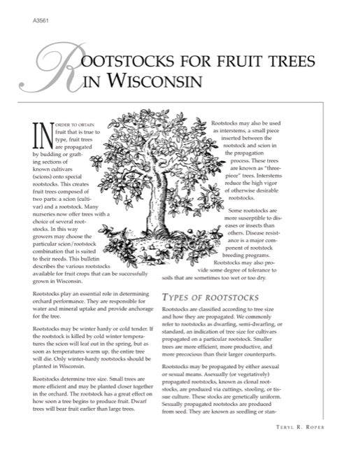 Rootstocks for Fruit Trees in Wisconsin