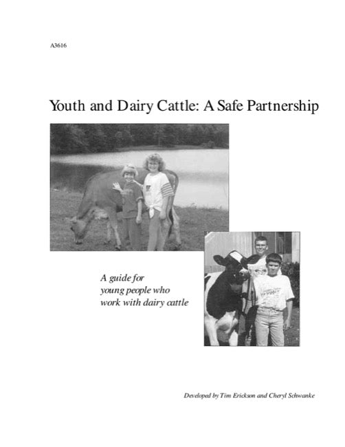 Youth and Dairy Cattle: A Safe Partnership