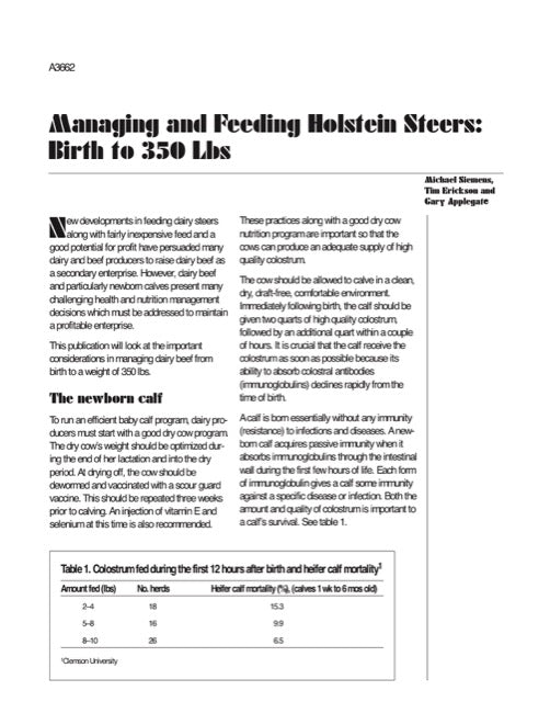 Managing and Feeding Holstein Steers: Birth to 350 Lbs