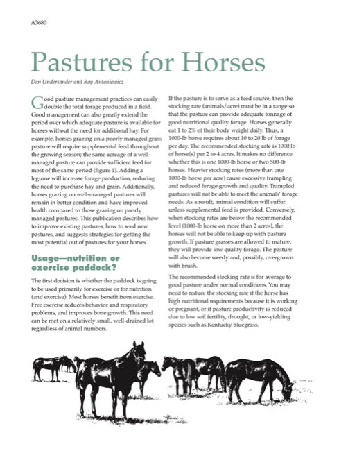 Pastures for Horses