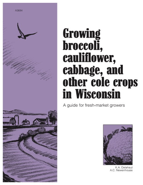 Growing Broccoli, Cauliflower, Cabbage, and Other Cole Crops in Wisconsin