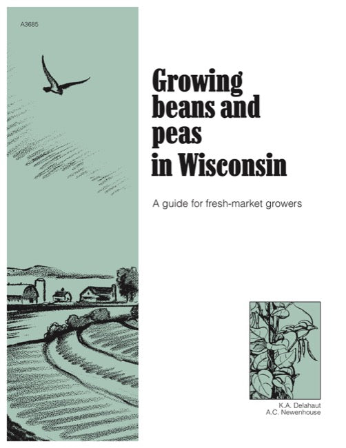 Growing Beans and Peas in Wisconsin