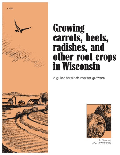 Growing Carrots, Beets, Radishes, and Other Root Crops in Wisconsin