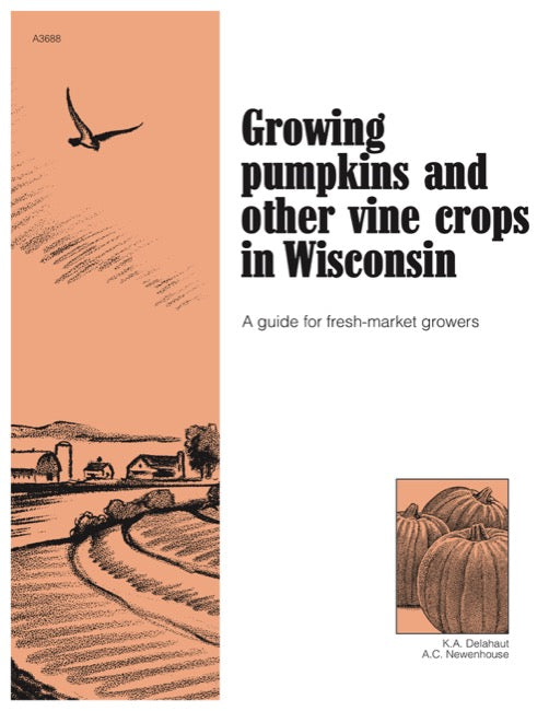 Growing Pumpkins and Other Vine Crops in Wisconsin