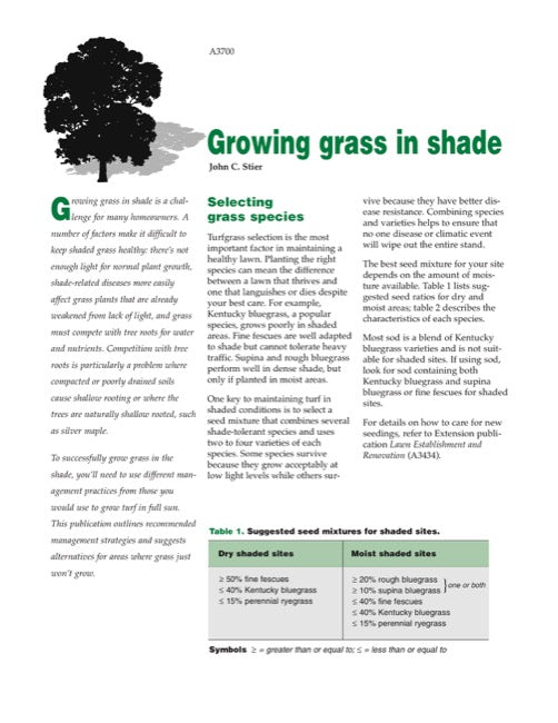 Growing Grass in Shade
