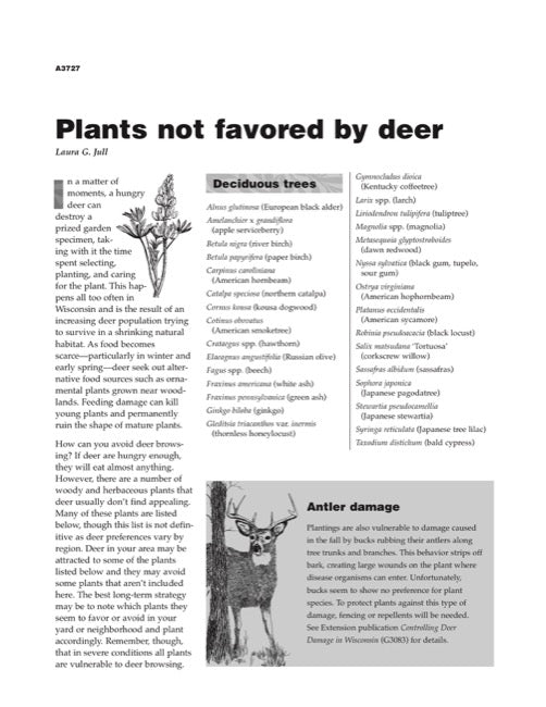 Plants Not Favored by Deer