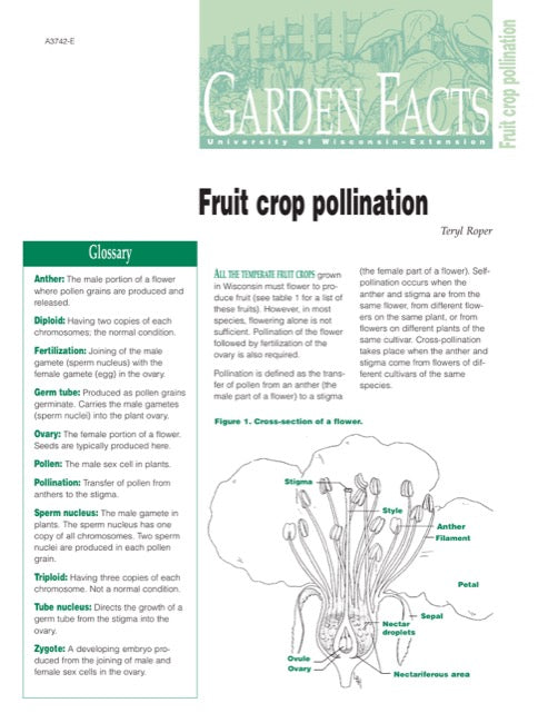 Fruit Crop Pollination