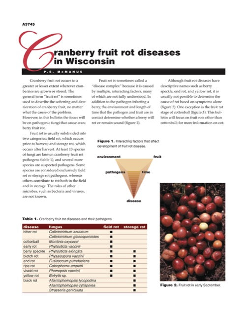 Cranberry Disorders: Cranberry Fruit Rot Diseases