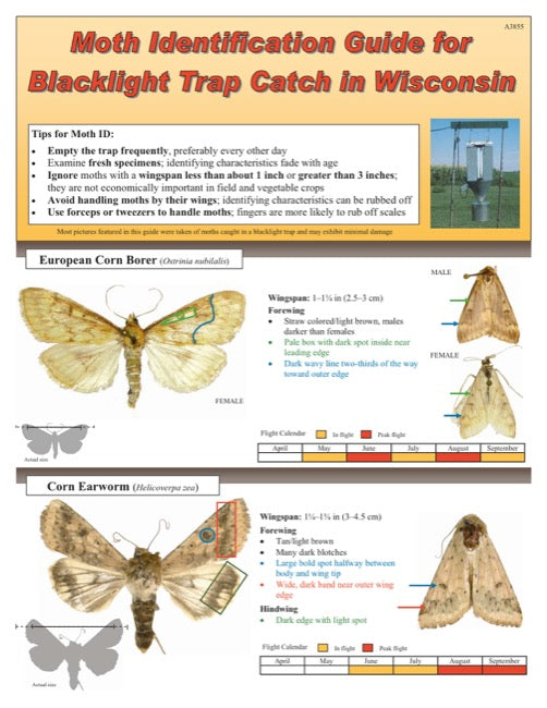 Moth Identification Guide for Blacklight Trap Catch in Wisconsin
