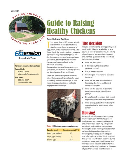 Guide to Raising Healthy Chickens
