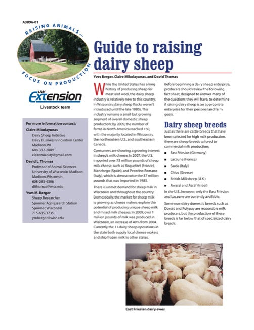 Guide to Raising Dairy Sheep