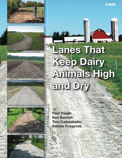 Lanes That Keep Dairy Animals High and Dry