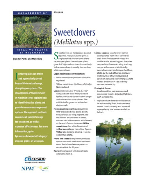 Sweetclovers