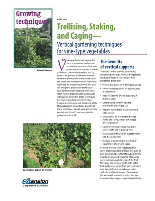 Trellising, Staking, and Caging