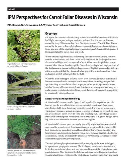 IPM Perspectives for Carrot Foliar Diseases in Wisconsin
