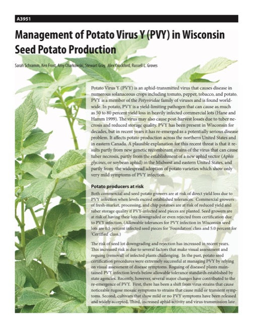 Management of Potato Virus Y (PVY) in Wisconsin Seed Potato Production