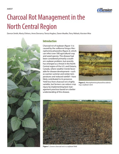 Charcoal Rot Management in the North Central Region