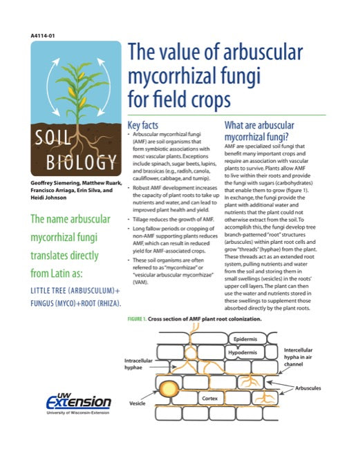 The Value of Arbuscular Mycorrhizal Fungi for Field Crops
