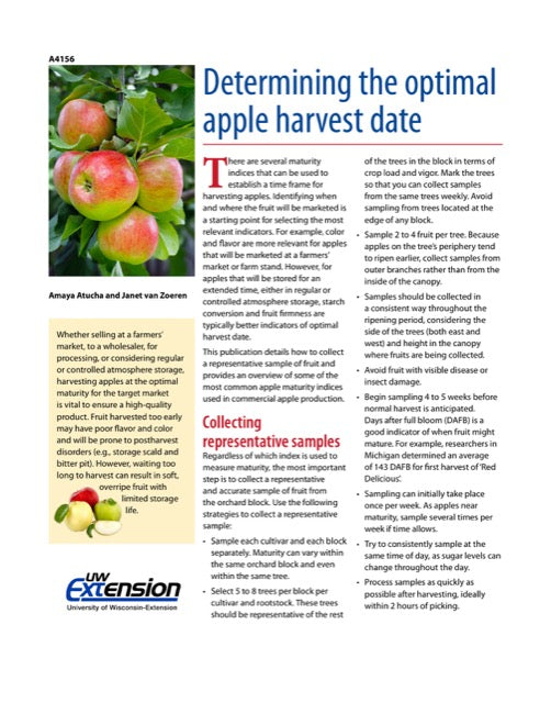 Determining the Optimal Apple Harvest Date