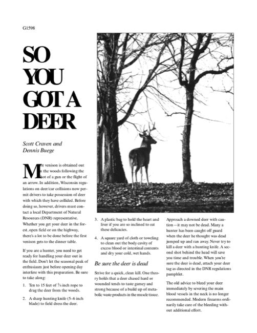 So You Got a Deer