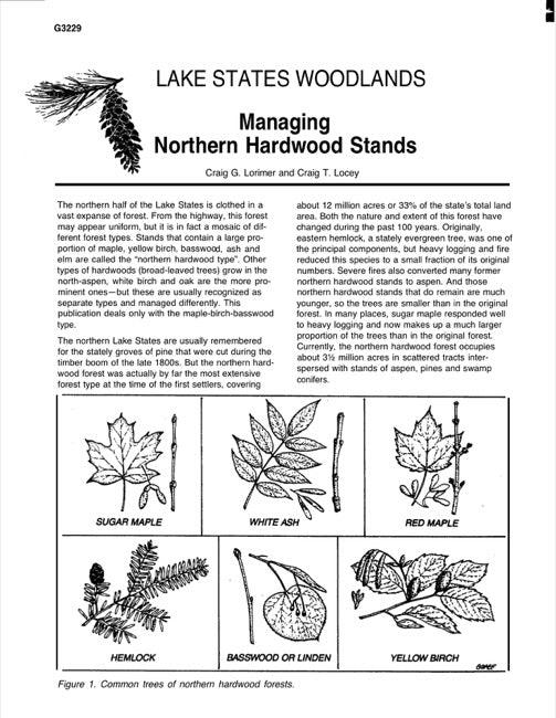 Managing Northern Hardwood Stands