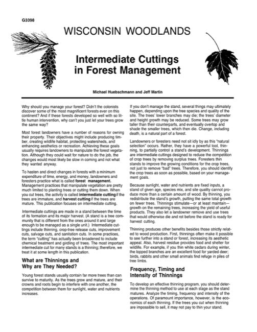 Intermediate Cuttings in Forest Management