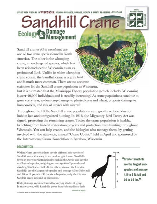 Sandhill Crane Ecology and Damage Management