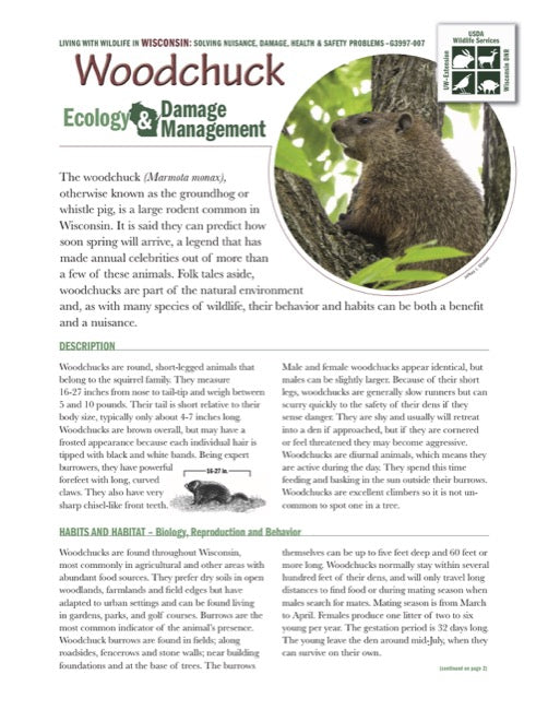 Woodchuck Ecology and Damage Management