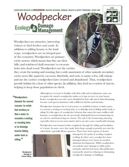 Woodpecker Ecology and Damage Management