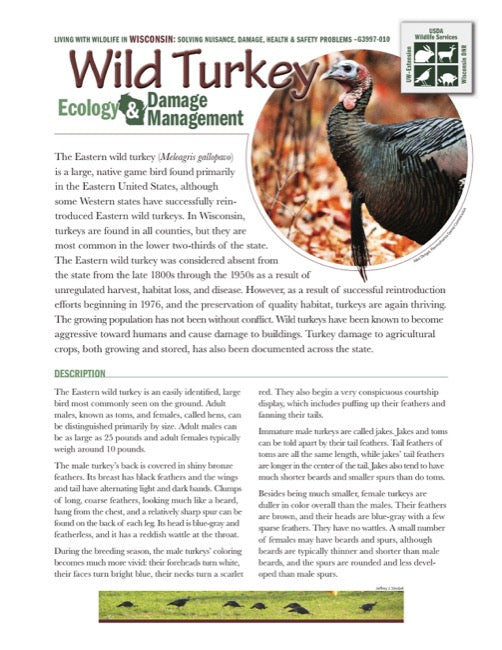 Wild Turkey Ecology and Damage Management