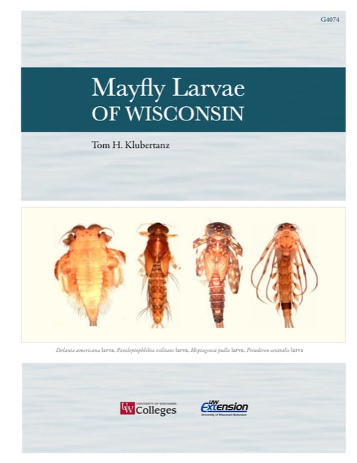 Mayfly Larvae of Wisconsin