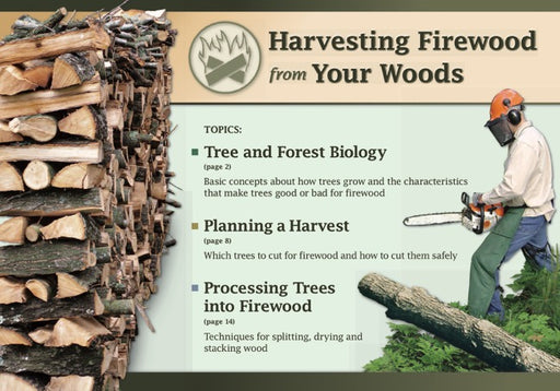 Harvesting Firewood from Your Woods