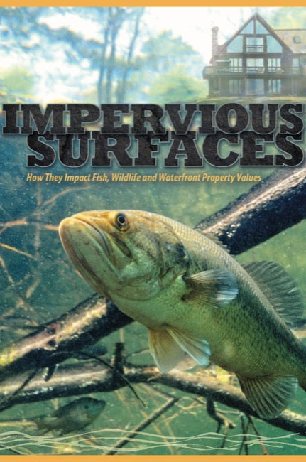 Impervious Surfaces: How they Impact Fish, Wildlife and Waterfront Property Values