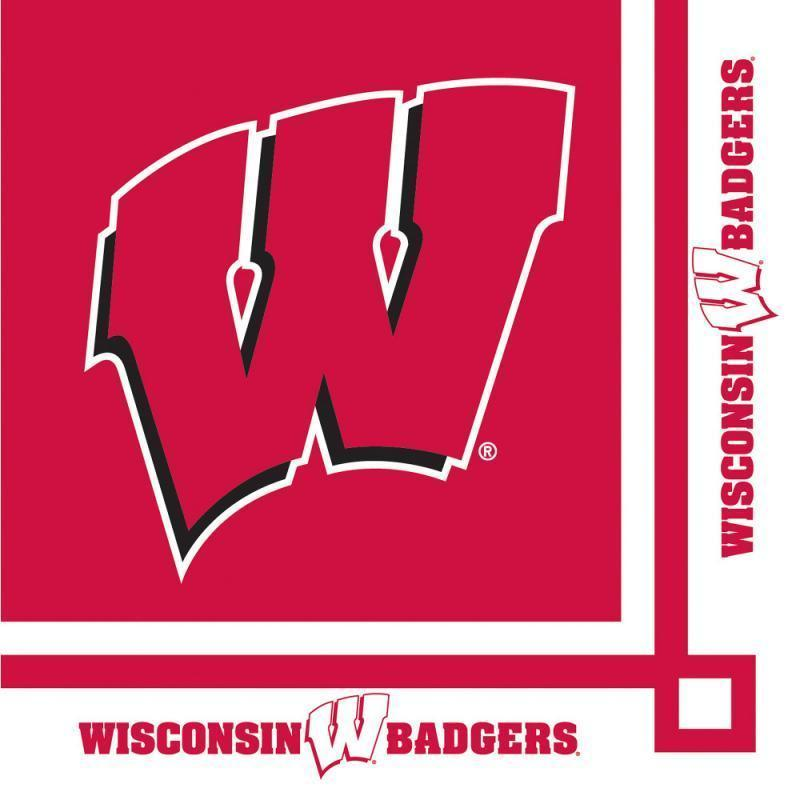 Wisconsin Badgers Party Decorations