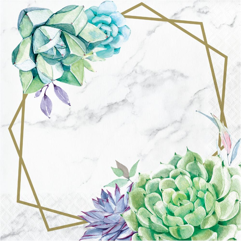Geometric Succulents Luncheon Napkin (16/Pkg) by Creative Converting